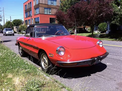 1973 Alfa Romeo Spider  Information And Photos Momentcar