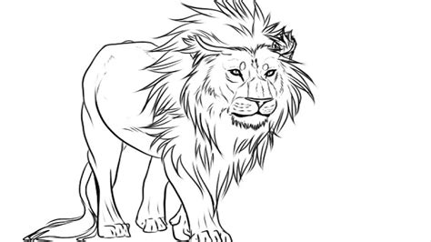 coloring pages easy kids drawing lion drawing pictures