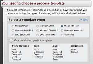 tfs synchronization With team foundation server process templates