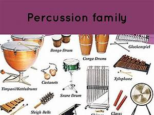 Percussion Family Related Keywords - Percussion Family ...