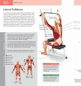 Student U0026 39 S Anatomy Of Exercise Manual  50 Essential