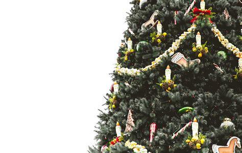 cinco lugares donde comprar su 225 rbol de navidad en