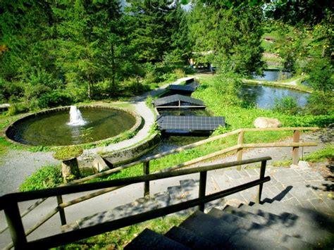 Wasserhaus Am Blausee In Kandergrund by Forellenzucht Am Blausee Kandersteg