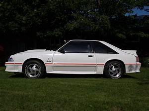 1988 Mustang GT - Canadian Mustang Owners Club - Ford Mustang Forums