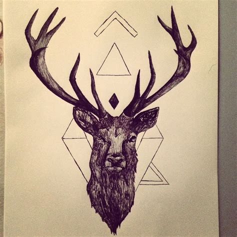 stag drawing  artist pinterest deer drawing