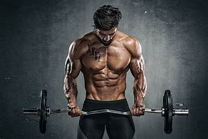 Body Building Stock Photos  Pictures  U0026 Royalty-free Images