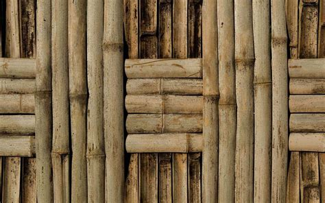 bamboo wall hd   abstract wallpapers  mobile