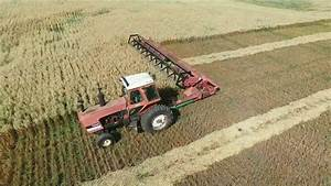 Massey 613 Pull Type Swather In Oats