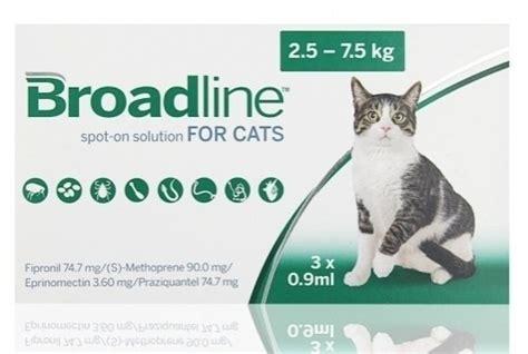 Bravecto Katze Spot On