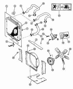 1998 Jeep Cherokee Grommet  Lower  Radiator  Engine