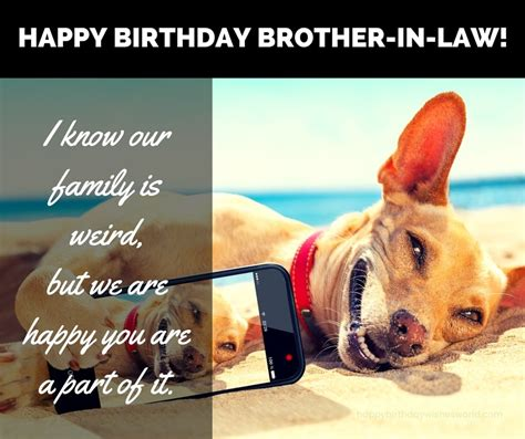 happy birthday brother  law wishes find