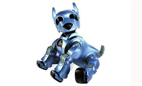 Robotic Toys For Dogs