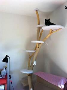 Kratzbaum Selber Machen : die 25 besten ideen zu kletterwand bauen auf pinterest kletterwand kinder kletterwand und ~ Orissabook.com Haus und Dekorationen
