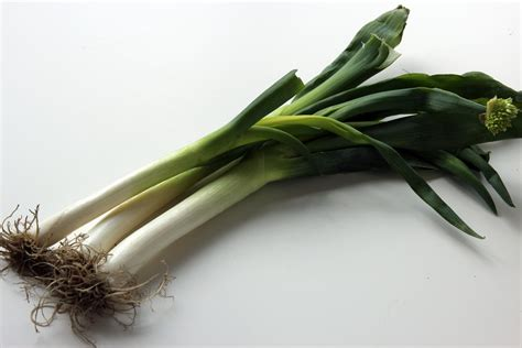 green onions large green onions dae pa korean cooking ingredients maangchi com