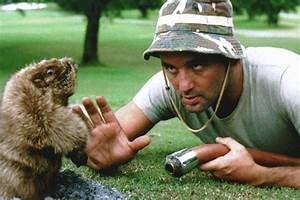 Bill Murray to Open 'Caddyshack'-Themed Bar Near Chicago