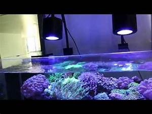 Best Aquarium Lights Lumini 120w Led Aquarium Light New Asta 120 Above 36