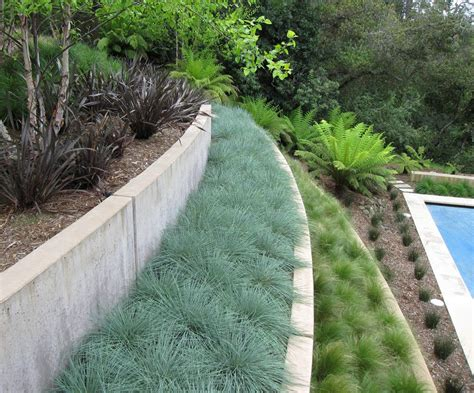 mass planting grass hillside landscape contemporary with concrete wall concrete wall retaining wall