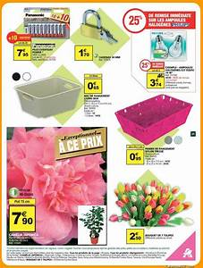 Catalogue Auchan La Defense : cam lia japonica auchan le ~ Dailycaller-alerts.com Idées de Décoration