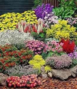 Pflanzen Günstig Kaufen : gro er staudengarten 14 pflanzen g nstig online kaufen mein sch ner garten shop ~ A.2002-acura-tl-radio.info Haus und Dekorationen