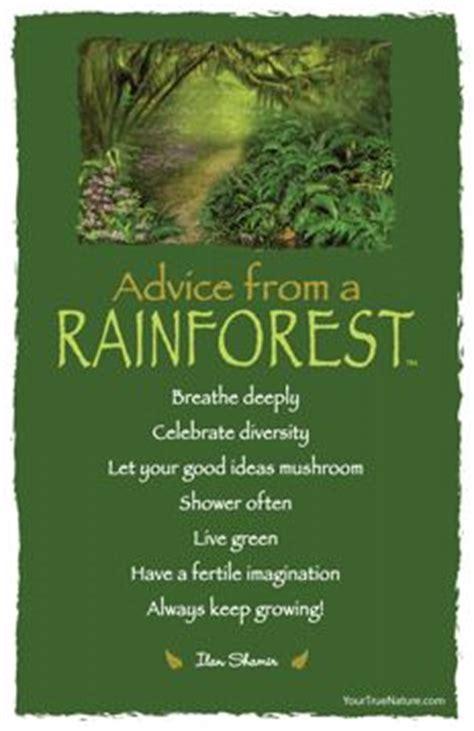 quotes   rainforest animals quotesgram