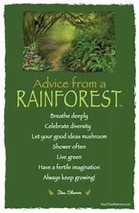 The Rainforest ... Amazon Jungle Quotes