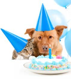 Happy Birthday Dogs and Cats