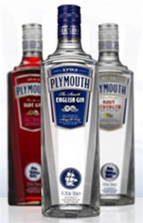 brands of gin plymouth sloe gin makes a sloe return serious eats