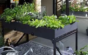 Jardinière Balcon Leroy Merlin : am nager un carr potager sur le balcon ou la terrasse ~ Melissatoandfro.com Idées de Décoration