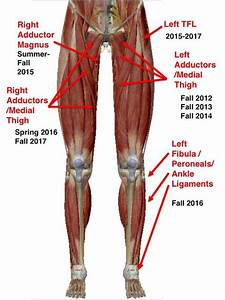 24 Best Ot  U0026 Lower Extremity Images On Pinterest