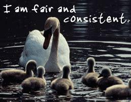fair  consistent    school