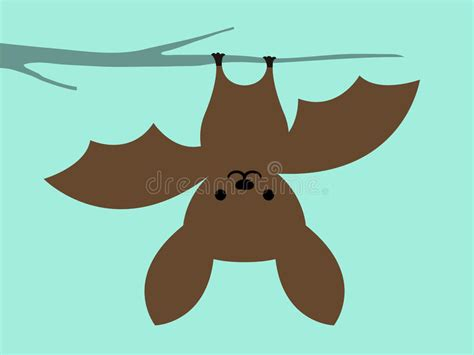 Little Bat Hanging Upside Down Stock Vector
