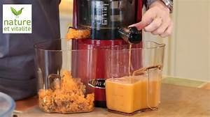 Jus Avec Extracteur : utiliser la pulpe de l extracteur de jus 10 conseils pratiques le blog de nature et vitalit ~ Melissatoandfro.com Idées de Décoration