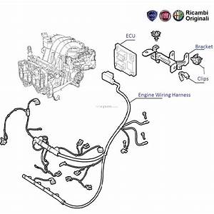 Fiat Punto 1 2 Workshop Wiring Diagram
