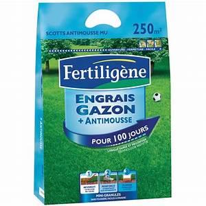 Anti Mousse Et Hydrofuge 2 En 1 : engrais 2 en 1 anti mousse longue dur e 10 kg fertilig ne sac de 10 kg gamm vert ~ Melissatoandfro.com Idées de Décoration