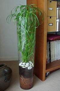 Bouture Plante Verte : une plante verte facile vivre mon billet d 39 humeur en couleurs composition pot garden ~ Melissatoandfro.com Idées de Décoration