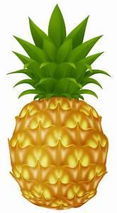 Pineapple - ClipArt Best