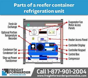 Refrigerated Container  Reefer