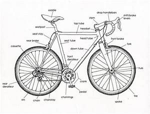 bicycle diagrams printable diagram With bike schematic