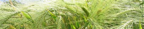 chambre d agriculture moselle productions végétales meurthe et moselle