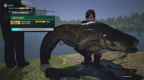 dovetail fishing catfish 42kg