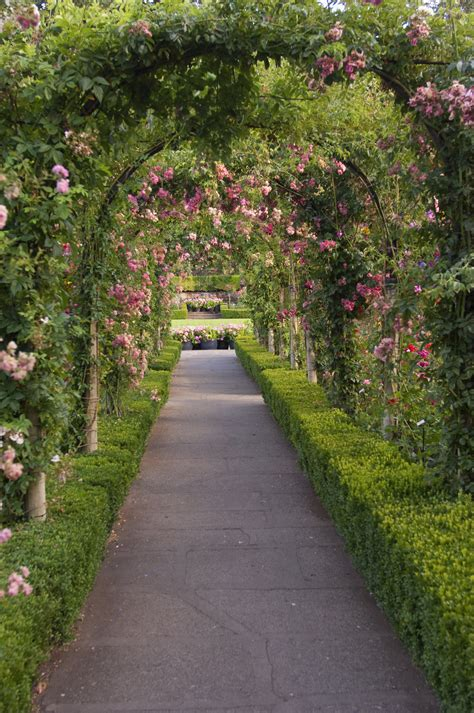 Garden Picture Hd by The Meaning And Symbolism Of The Word 171 Garden 187