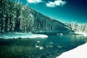 Yellowstone National Park Lodging