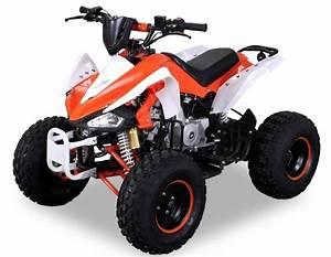 Quad 125cc Panthera : quad 125cc semi automatique panthera 8 orange ~ Melissatoandfro.com Idées de Décoration