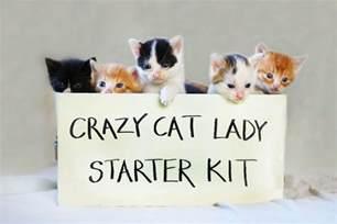cat starter kit cat starter kit for caturday rantings of a