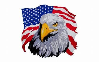 Eagle American Flag Clipart Clip Bald Library