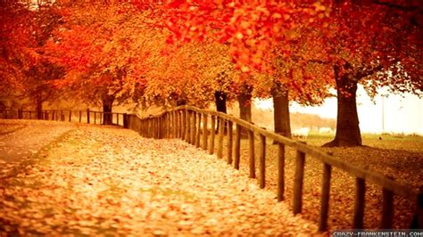 autumn pictures  desktop backgrounds wallpapertag