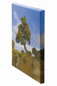 Fotos Auf Leinwand : 30 x 20 cm leinwand foto auf ~ Eleganceandgraceweddings.com Haus und Dekorationen