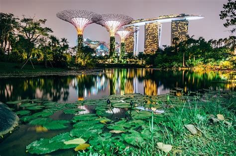 gardens of the bay interesting facts about gardens by the bay