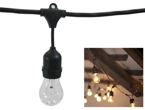 commercial outdoor string lights with garden and