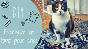 Tapis Pour Chat : fabriquer un tapis pour chat le tuto diy rapide et pas cher ~ Teatrodelosmanantiales.com Idées de Décoration